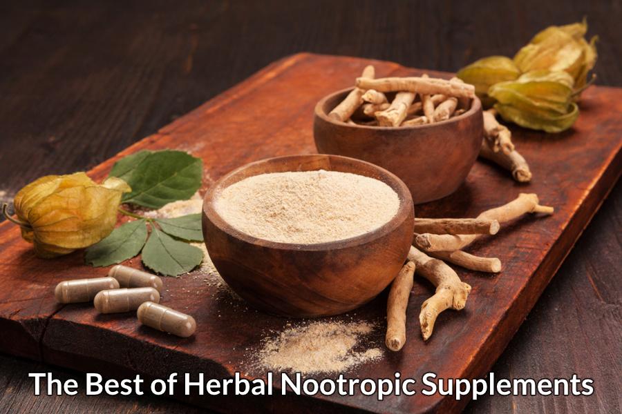 The Best of Herbal Nootropic Supplements