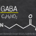 Herbs That Mildly Boost GABA Levels/Activity in The Brain