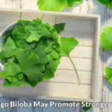 Ginkgo Biloba vs. My Thinning, Falling Hair: It Works!