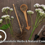 List of 10 Anxiolytic Herbs & Natural Substances